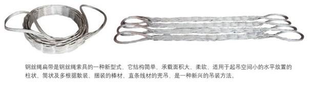 鋼絲繩扁帶2.jpg